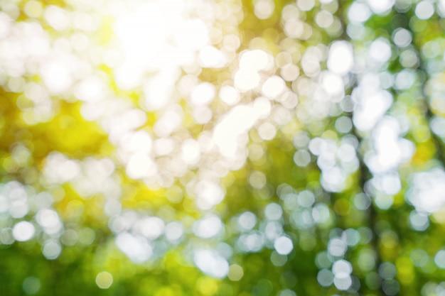Натуральный цветочный размытый летний фон