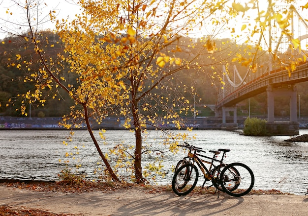 秋のキエフ市の豪華な景色