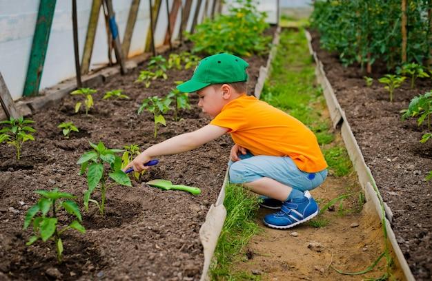Ребенок в саду