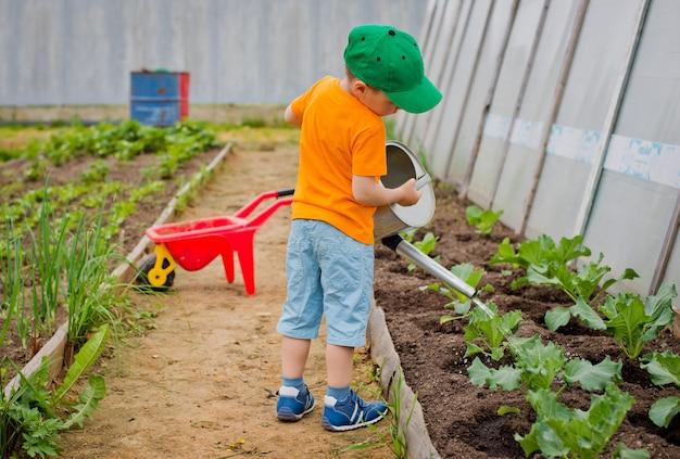 Ребенок поливает сад