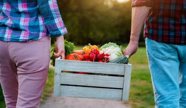 Деревянная коробка с овощами фермы в руках мужчин и женщин, крупным планом.