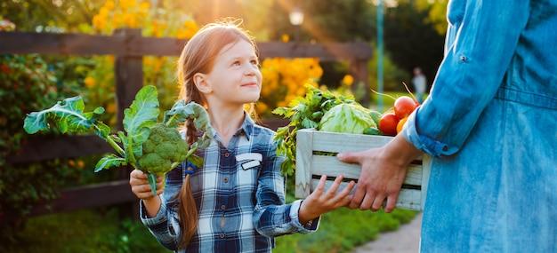 子供たちはお母さんの家の庭で新鮮な有機野菜のバスケットを保持しています。