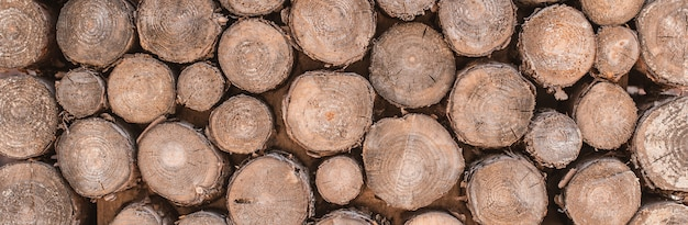 Текстура древесины фон имеют много бревна, вырезанные из