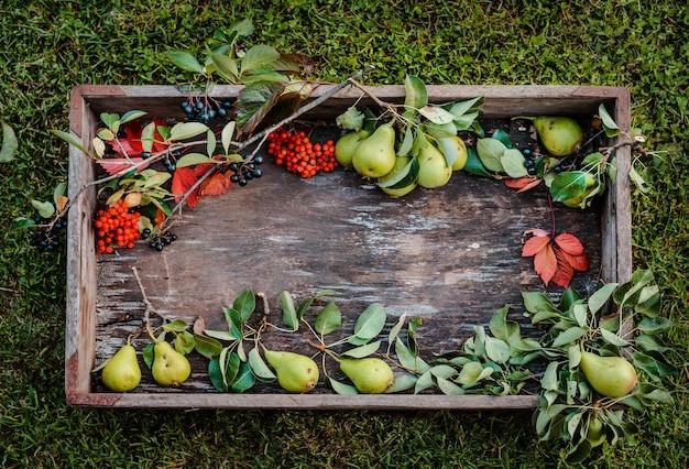 梨の枝と紅葉と赤と黒のナナカマド