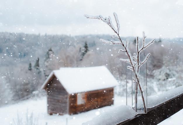 Замороженные ветки со льдом в стеклянной вазе в зимнем лесу