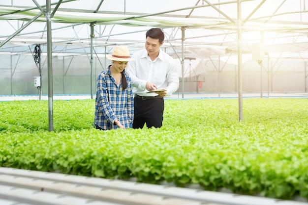 スモールビジネス起業家コンセプト:新鮮な野菜サラダを収穫する若い魅力的な美しいアジアの女性の肖像写真。