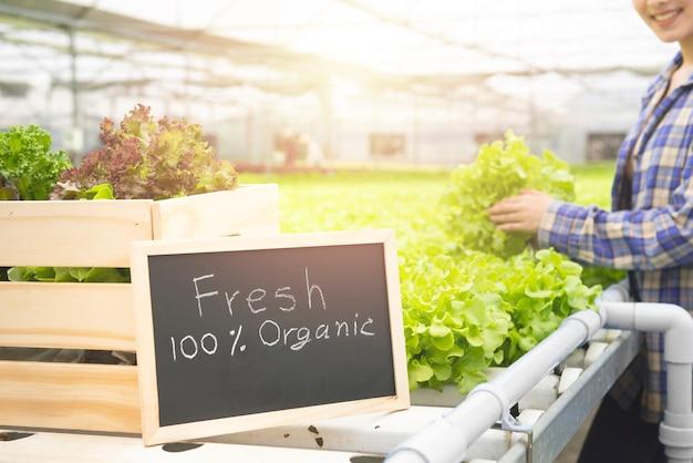 Органическая овощная ферма, бизнес-фермер, концепция здорового питания, свежая от руки текста фермы, нарисованной на доске.