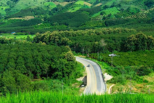 田舎の真ん中に道路と森の空撮