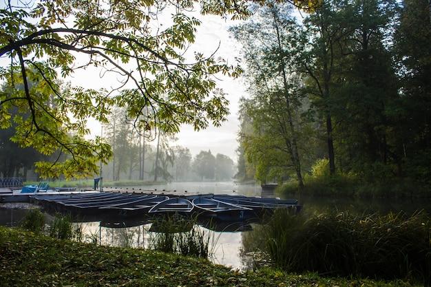 Утренний туманный осенний парк. туманное утро. туман в парке.