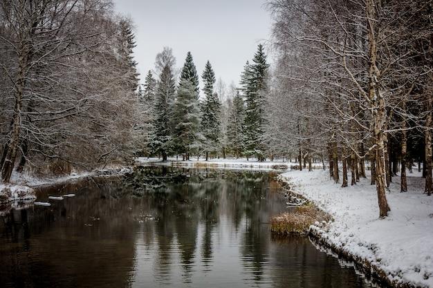 ウィンターパークスノーパーク写真ウィンターパーク。冬の風景冬の自然