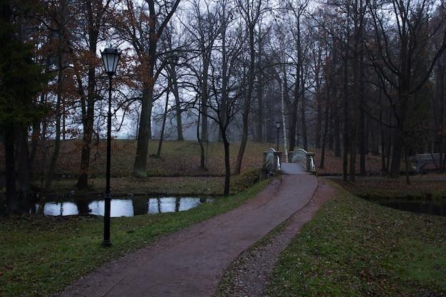 霧の秋の朝の公園。暗い公園。霧の公園