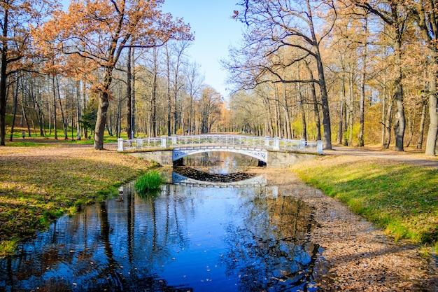 Мосты городской осенний парк. золотая осень осень в парке. желтая листва.