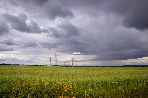 Летний полевой пейзаж. русские просторы. перед штормом. темное дождливое небо.