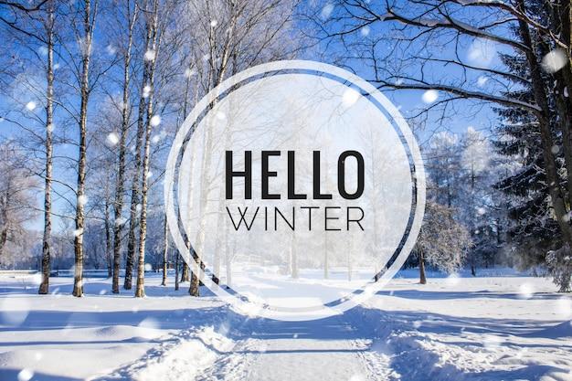 バナーこんにちは、冬。こんにちは冬の写真。新しい季節。自然。冬の風景。テキストのある風景。