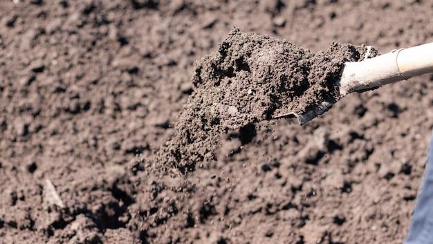 Рытье грядок весной. посев. подготовка почвы для посева. дом и сад. самоизоляция в деревне. домашнее хозяйство.