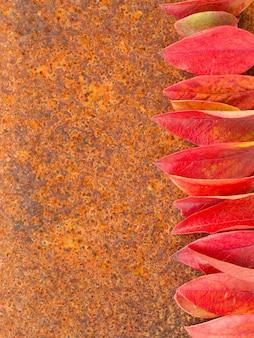 錆のメタロの背景に秋の葉