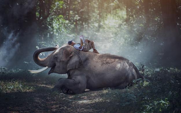 タイの農村の学生タイのスリン県の象と一緒に本を読んでいます。