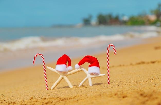 サンタの帽子とキャンディー杖とビーチのヒトデ