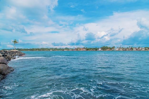 Океан шри-ланка. природа и пальмы.