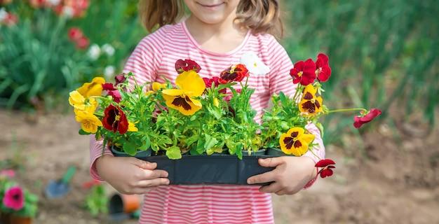 Ребенок сажает цветочный сад. выборочный фокус.