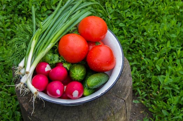 白い木製の背景に自家製野菜。セレクティブフォーカス