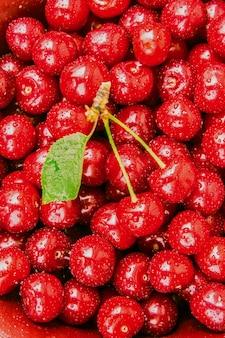 赤いサクランボ。セレクティブフォーカス