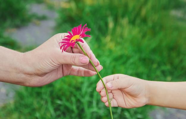 子供は母親に花をあげる。セレクティブフォーカス