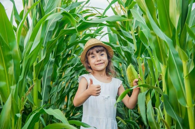 トウモロコシの分野の子供。小さな農家セレクティブフォーカス