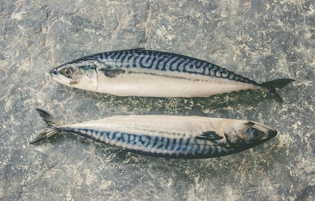 サバの生の魚。セレクティブフォーカス飲食。