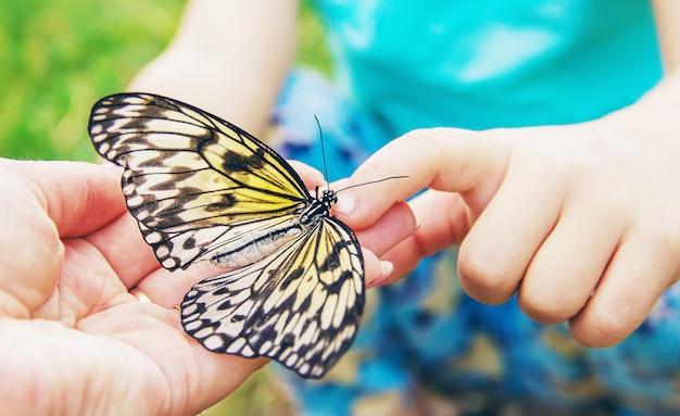 Ребенок с бабочкой. идея спрашивай. выборочный фокус.