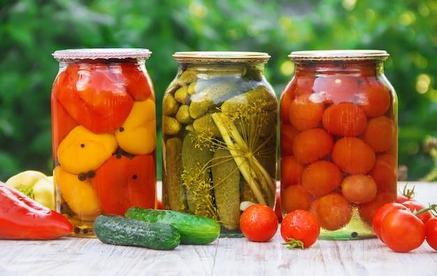野菜の保存ブランクセレクティブフォーカス自然