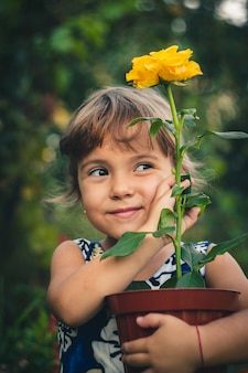 黄色いバラの若い庭師