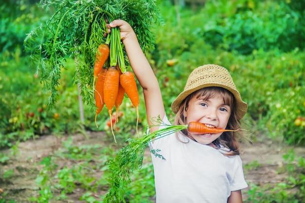 Ребенок и овощи на ферме. выборочный фокус.