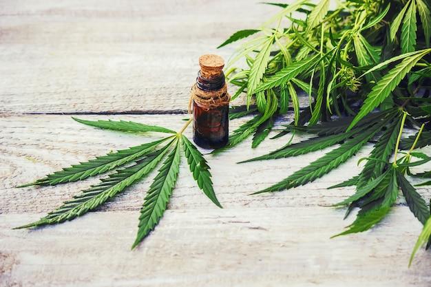 大麻のハーブや葉のトリートメントブロス、チンキ、エキス、オイルセレクティブフォーカス