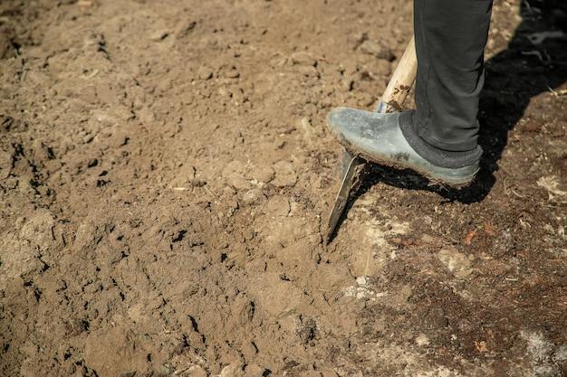 庭のシャベルを掘ります。園芸。セレクティブフォーカス