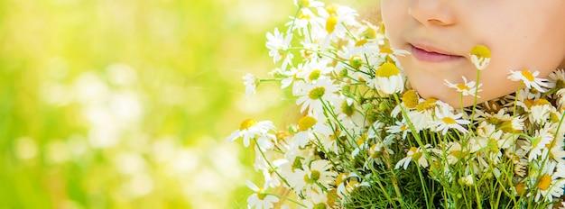 カモミールを持つ少女。写真。自然の花。
