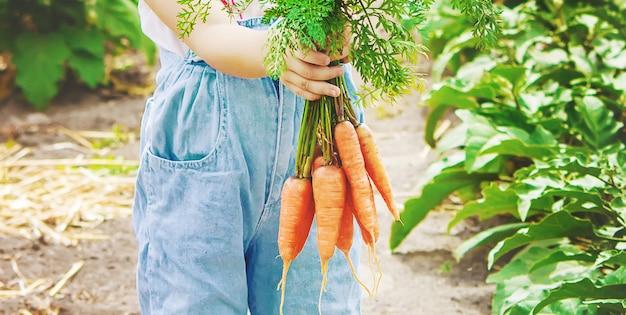 子供と農場の野菜。写真。