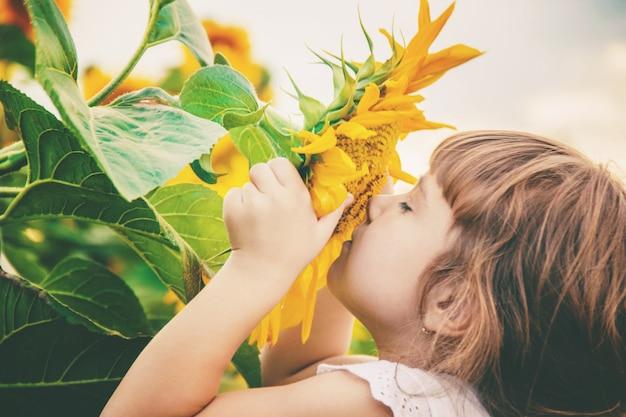 ひまわり畑の子供は小さな農家です。セレクティブフォーカス