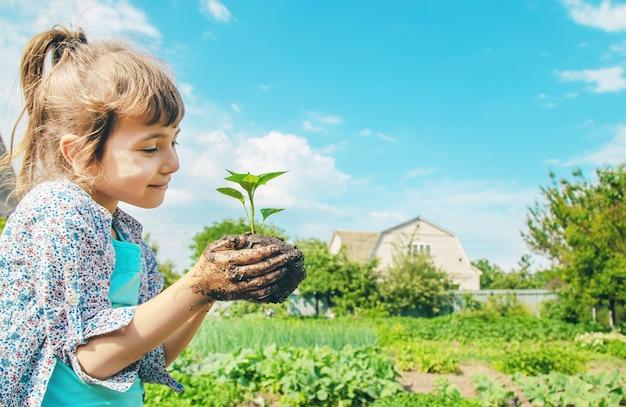Детские растения и полив растений в саду.
