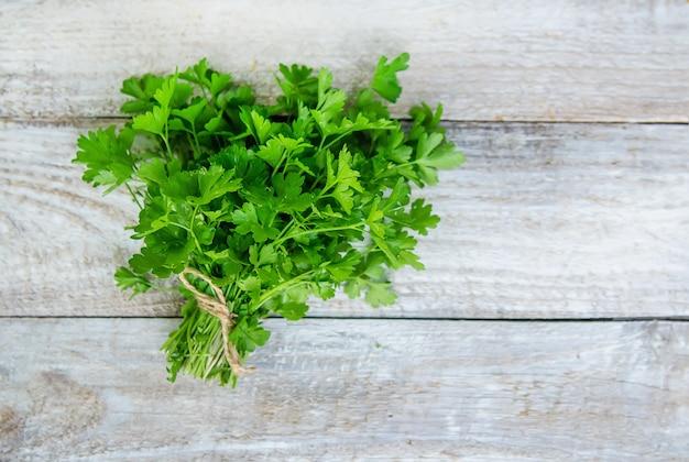 庭からの新鮮な自家製野菜。