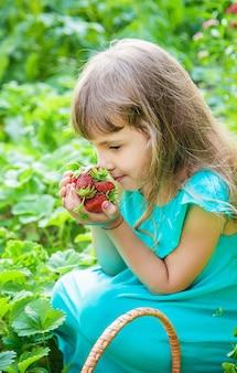 子供は庭でイチゴを集めます。セレクティブフォーカス