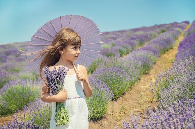 ラベンダーの開花畑の子供。