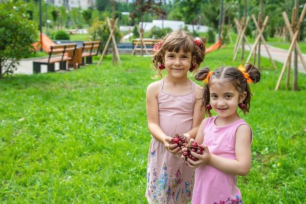 子供たちは夏にさくらんぼを食べます