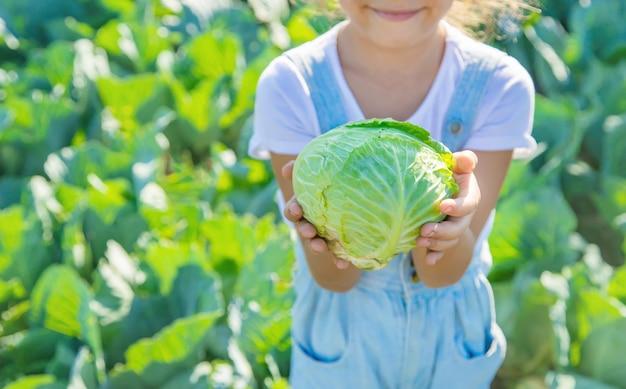 Ребенок с капустой и брокколи в руках.