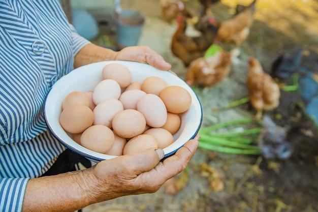 祖母の手で自家製の卵
