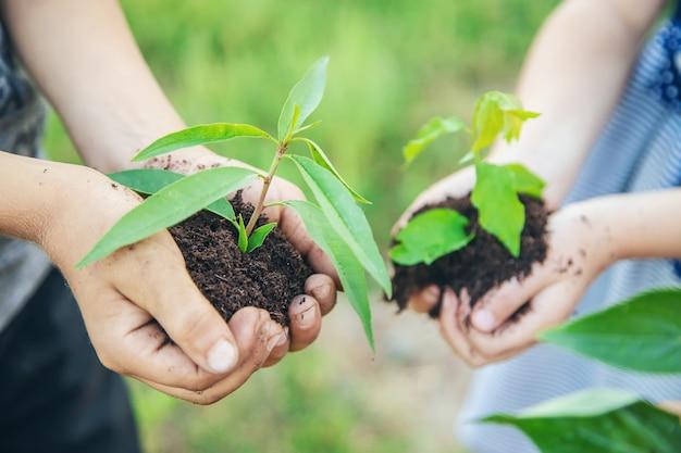 子供たちは自分の手で一緒に植物を植えます。