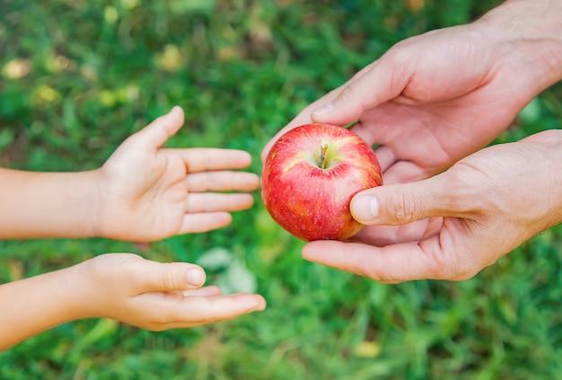 娘と父親は庭でリンゴを収集します