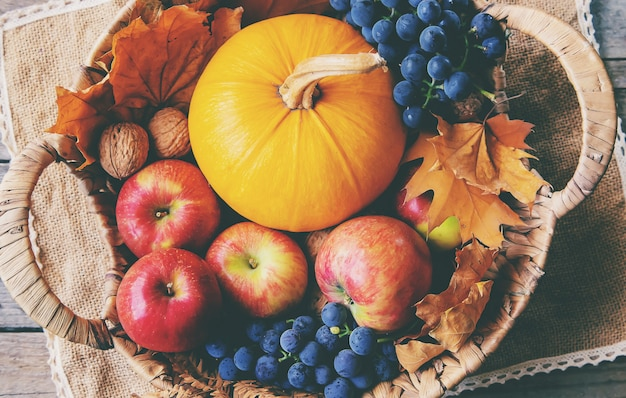 Осень с тыквой. день благодарения.