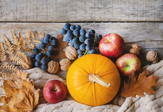 Осенний фон с тыквой. день благодарения. выборочный фокус.