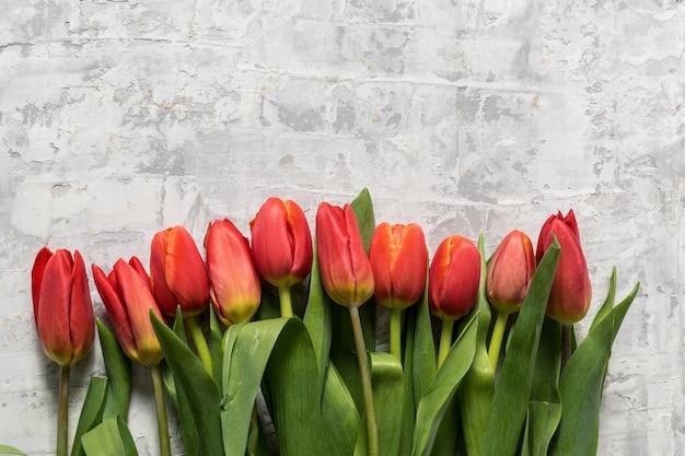 灰色の背景上の春のチューリップの花の大きな花束の平らなレイアウトし、テキストのためのスペースをコピーします。